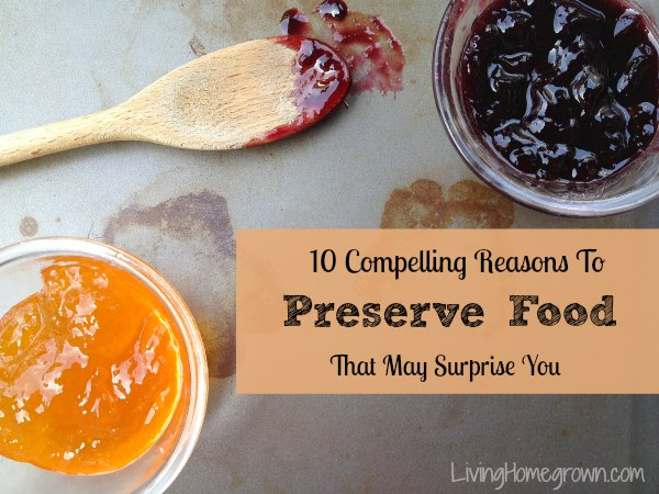 10 Compelling Reasons to Preserve Food