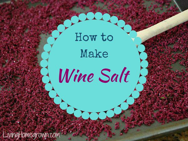 Making Wine Salt - LivingHomegrown.com