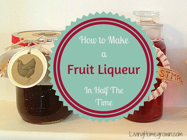Homemade Liqueurs Quickly - LivingHomegrown.com