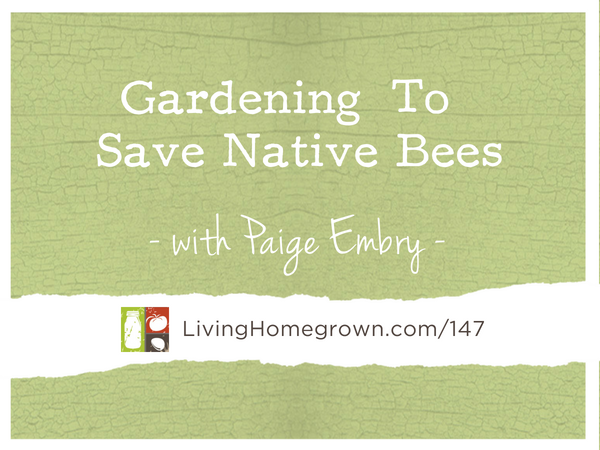 Gardening to Save Native Bees - LivingHomegrown.com