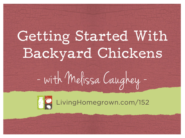Getting Started With Backyard Chickens with Melissa Caughey on LivingHomegrown.com