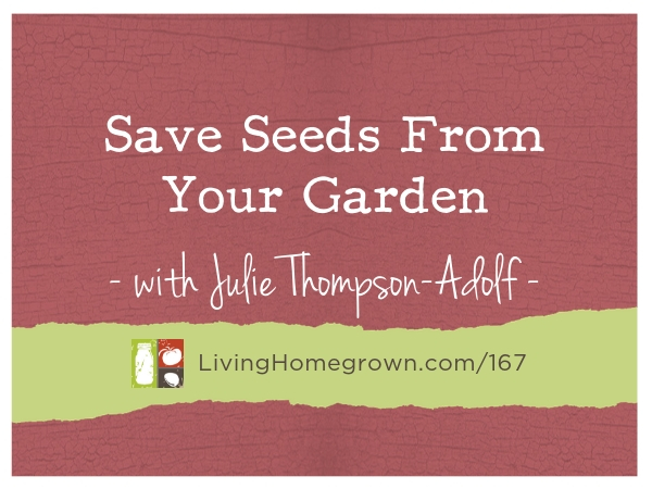 LH 167 Save Seeds From Your Garden - www.LivingHomegrown.com